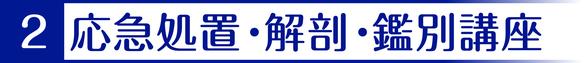 2.応急処置・解剖・鑑別講座