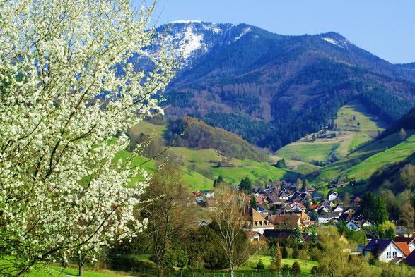 Münstertal mit Belchen 1414 m
