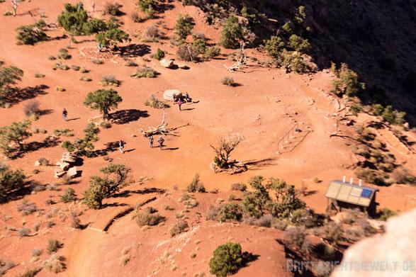 grand,canyon,southrim,southkaibabtrail,cedar,ridge,view,britta,lieder,arizona,colorado,tipps