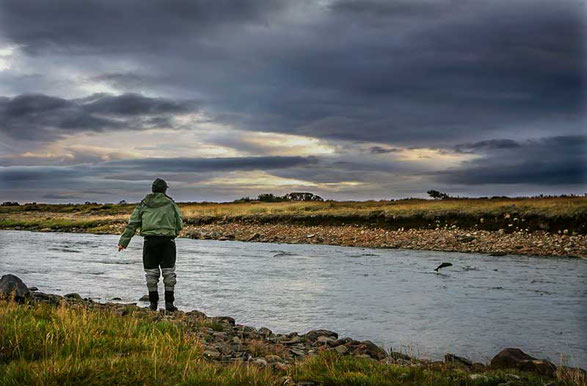 Fly fish Iceland, FFTC.club destination, River and Fly fisher in Iceland, Fly fish adventure for wild trout, Atlantic Salmon, Arctic char, Big trout