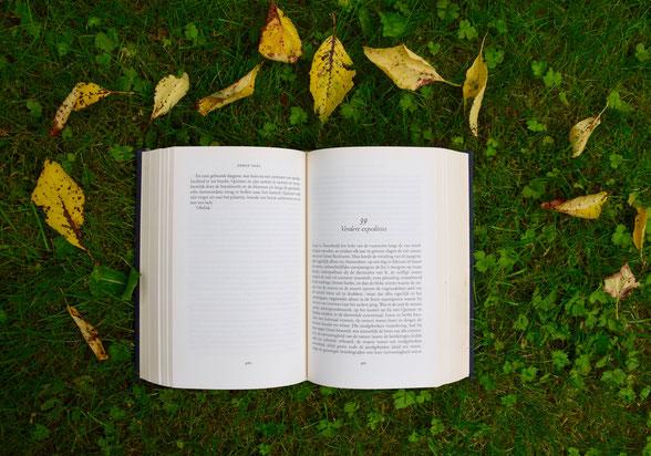 Angebot Autorentraining, Schreib dein Buch!