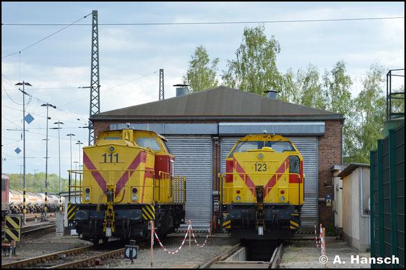 Neben 298 102-5 (MEG 111) steht am 13. Mai 2019 auch 1001 003-5 (MEG 123, ex DR 110 048-6) in Böhlen am Lokschuppen