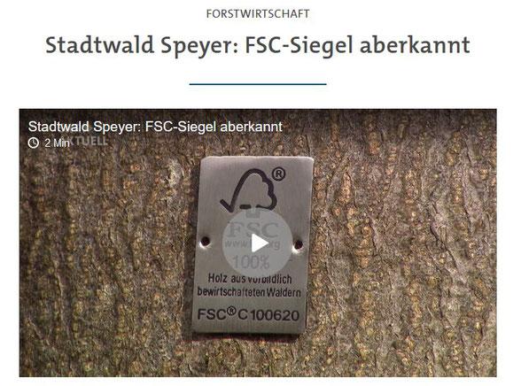 Quelle: https://www.swr.de/swraktuell/rheinland-pfalz/stadtwald-speyer-fsc-siegel-aberkannt-100.html