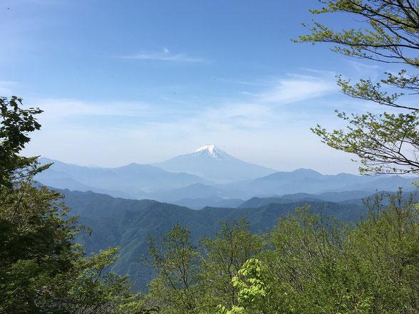 オサモミ整体院 ウォーキング・富士山