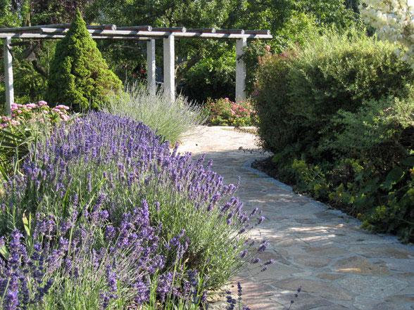 Garten mit mediteranem Flair, italienischer Pergola