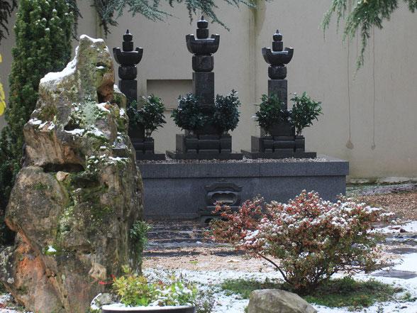 Jardin du Shingyôji en hiver