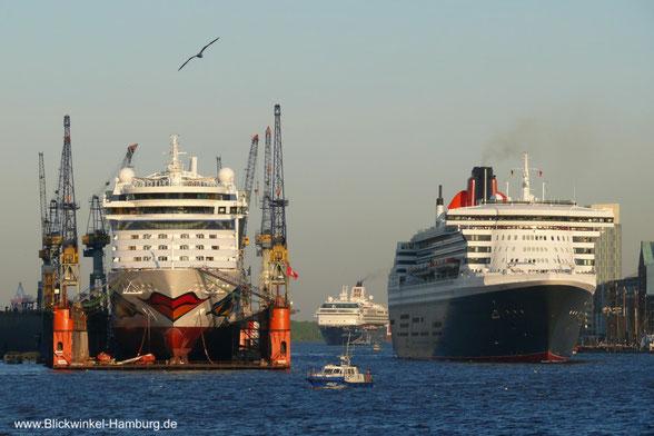 Kreuzfahrtschiffe im Hamburger Hafen. AIDA, Mein Schiff, & Queen Mary2