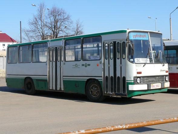 Пригородный автобус большого класса Ikarus 260.36. Полоцк. 05.04.2009