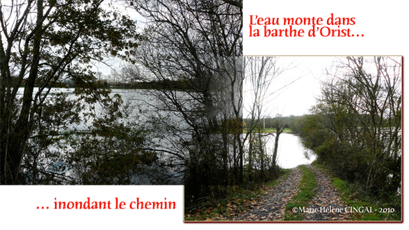 orthe, inondation, peyrehorade, landes, aquitaine, peche, lamproie, pyrenees, gave, arthous, adour, sorde, barthes, radelage, alose, saumon, port de lanne, couralin, hastingues,  tilhole, galupe