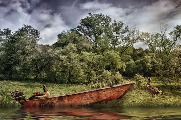 nilgaense-im-rettungsboot