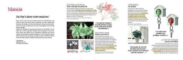 Magical Colours Your Home, un hortensia dans une box cadeau grâce au magazine Le Journal de la Maison