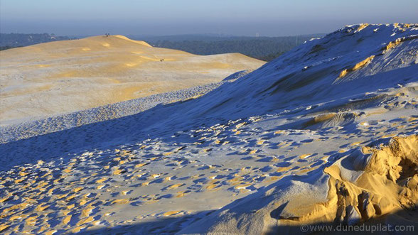 Hiver sur la Dune du Pilat