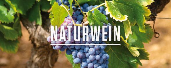 Naturwein orangewein vin naturel penedes barcelona loxarel