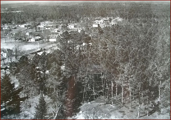 À proximité de Pissos, le mirador surplombe la forêt , 1957 -Ph. Collection M & L. NICOLET