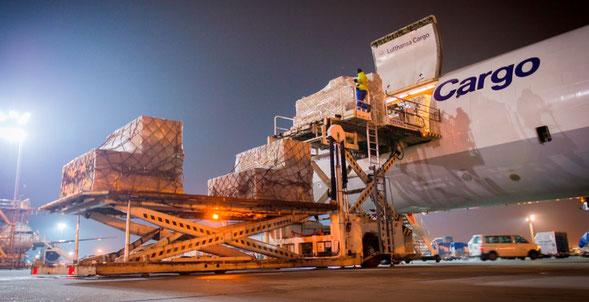Lufthansa Cargo succeeds in onloading cash this year. Image: Lufthansa Cargo