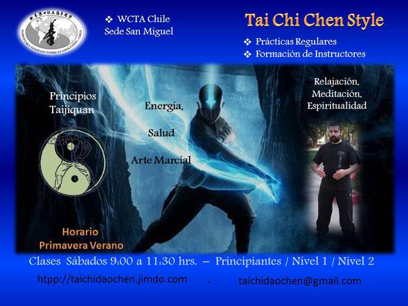 tai, chi, chuan, chen, taijiquan, practica, niños, adultos, cxwta, san miguel, xiaowang, jan, wctag, wctachile