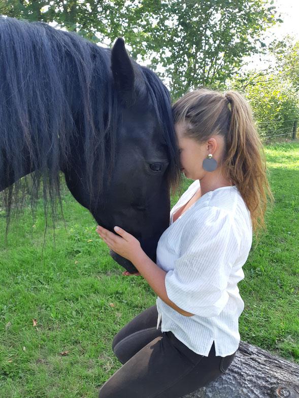 Behandlung von Pferdetaumatas,  Freiheitsdressur