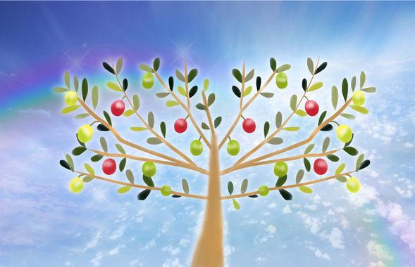平和と知恵を育てるプロセス