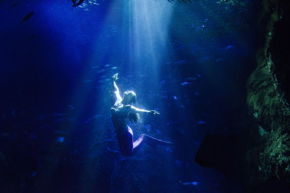 リアルアリエル マーメイドモデル 人魚 モデル 泳ぎが得意なモデル