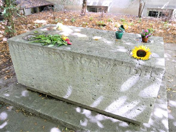 Würzburg Sehenswürdigkeiten: Blumen am Grab von ...