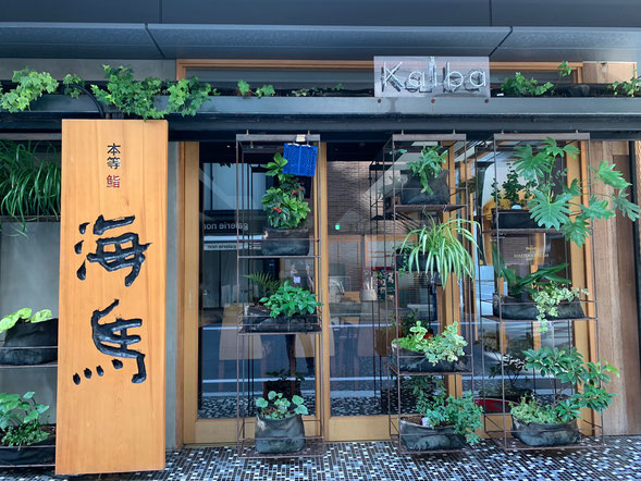記憶術講座、東京・京橋会場の1階には、お寿司屋さん『海馬』が。わたくし、パワースポットと崇めております。