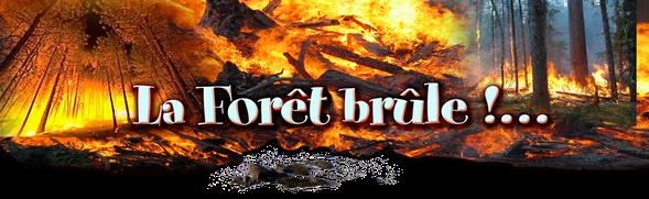 orthe, feu, foret, incendie, pignada, mirador, prevention, landes, aquitaine, etigny, ecobuage, charbonnier, crouzet