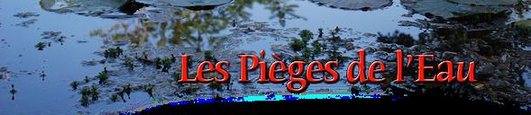 orthe, peyrehorade, landes, aquitaine, peche, lamproie, adour, gave, arthous, cagnotte, sorde, barthes, radelage, alose, saumon, port de lanne, lavoir, couralin, hastingues,  tilhole, galupe
