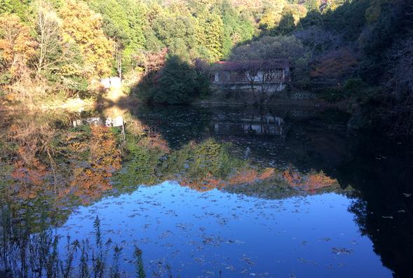 龍神神社(筆者撮影)