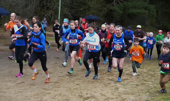Start zum Mittelstreckenrennen beim 30. Obere-Kyll Crosslauf in Birgel
