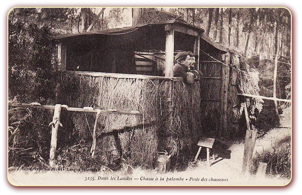 orthe landes peyrehorade aquitaine chasse, bois, foret, veneur, curée, gibier, sorde hastingues cagnotte gave adour saumon chalosse abbaye