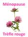 Ménopause et phytothérapie, quelle formule ?