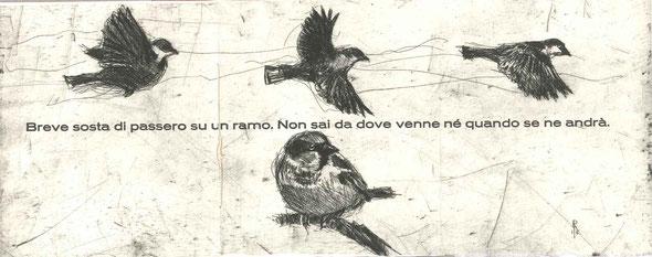 pagina centrale tripla con testo tipografico e acquaforte originale di Luciano Ragozzino
