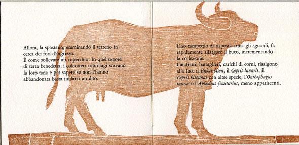 testo stampato tipograficamente e xilografia originale di Luciano Ragozzino a doppia pagina