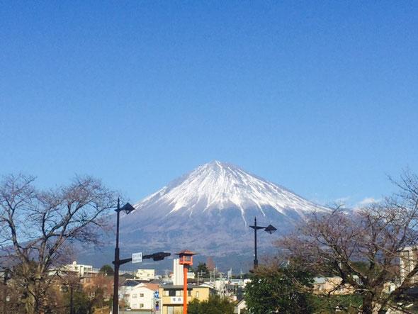 浅間本宮大社 鳥居 初詣 富士山 出店