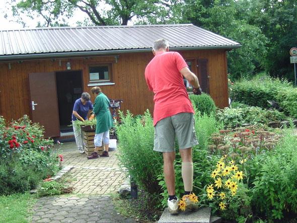 Schneiden von Sträuchern und neu einpflanzen von Blumenschalen beim Arbeitseinsatz
