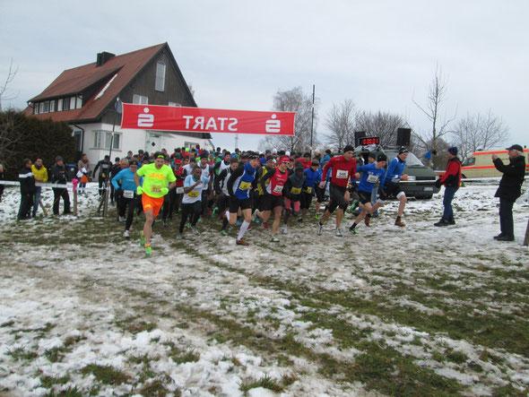 Beim Crosslauf in Bad Waldsee schlug sich Steffen gut bei einem stark besetzten Feld (Foto: Peter Steiner)