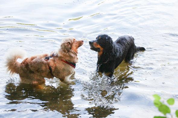 Fanny mit Leon im Wasser