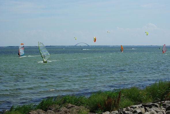 Surfer und Kiter in der Bucht von Orth