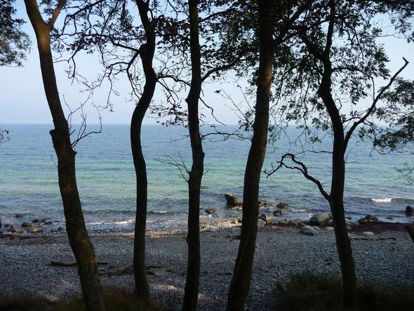 Steilküste von Katharinenhof