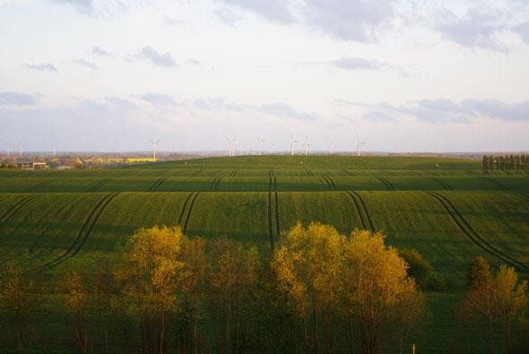 Landschaft bei Großenbrode
