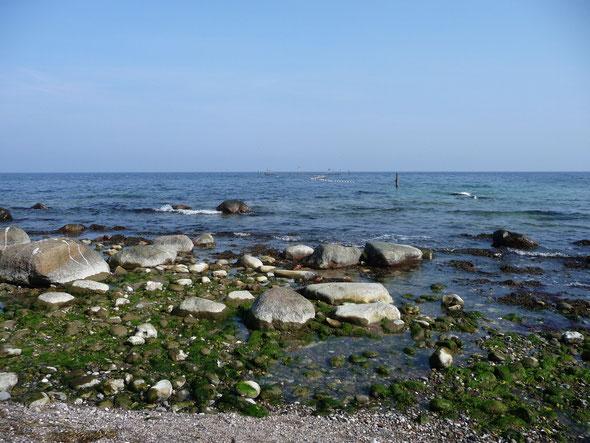 Strand von Katharinenhof
