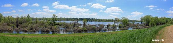 Prall gefüllte Überschwemmungsgebiet des Rivers