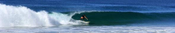 Surfer-Paradies