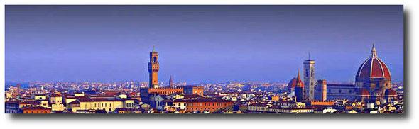 Veduta di Firenze-Link Comune Firenze