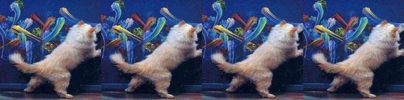 猫でも絵が描ける! どうにでもモノゴトは解釈できる。 by夫婦円満コンサルタントR 中村はるみ