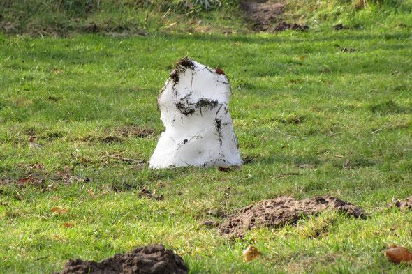 """Met in de tuin een """"Sneeuw konijn""""."""