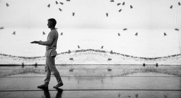 Solo by Joszef Trefeli © Gregory Lorenzutti