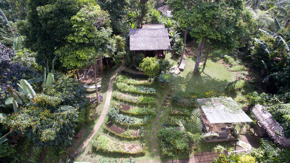 monkey bungalow with organic vegetable garden and monkey view