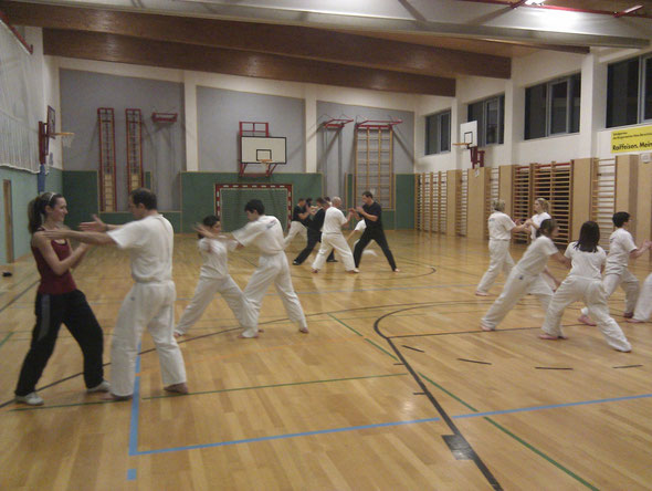 SDI Erwachsene Wr. Neustadt 2011