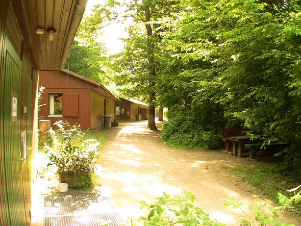Ferienhütten-Gruppe